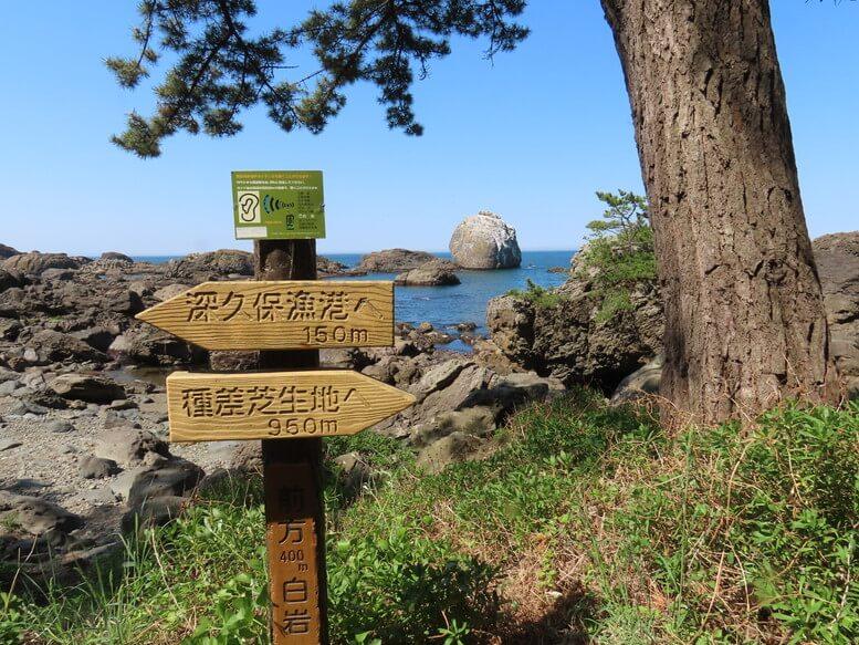 青森県八戸市 三陸ジオパーク みちのく潮風トレイル 淀の松原