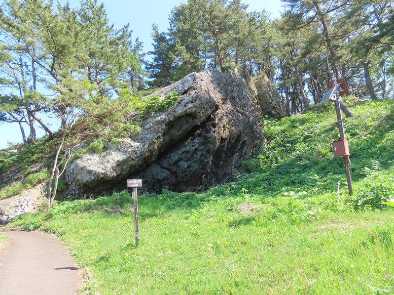 青森県八戸市 三陸ジオパーク みちのく潮風トレイル 淀の松原 コウモリ穴